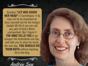 Andrée Seu Peterson Quote Image #1