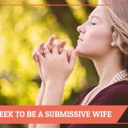 Five Ways I Seek To Be A Submissive Wife